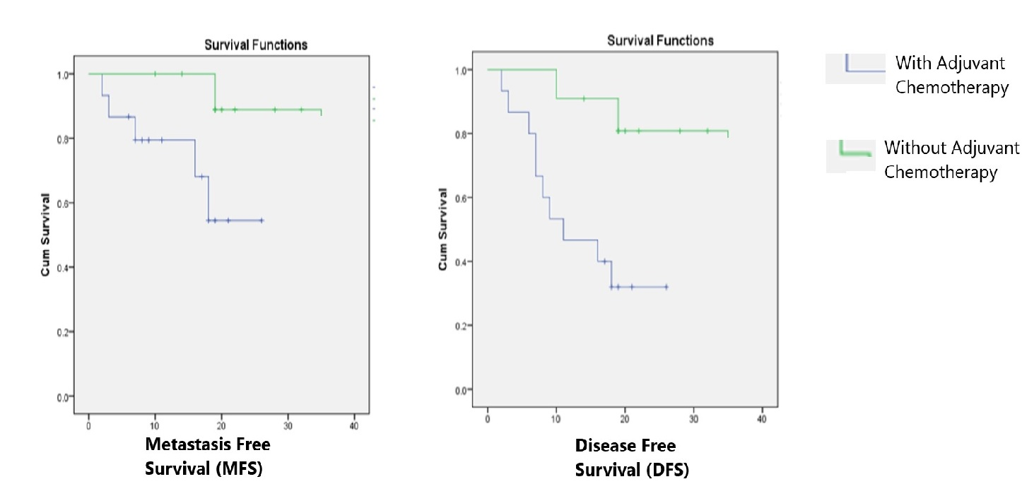 Prognostic significance of primary tumour volume in nasopharyngeal carcinoma – a single institute study