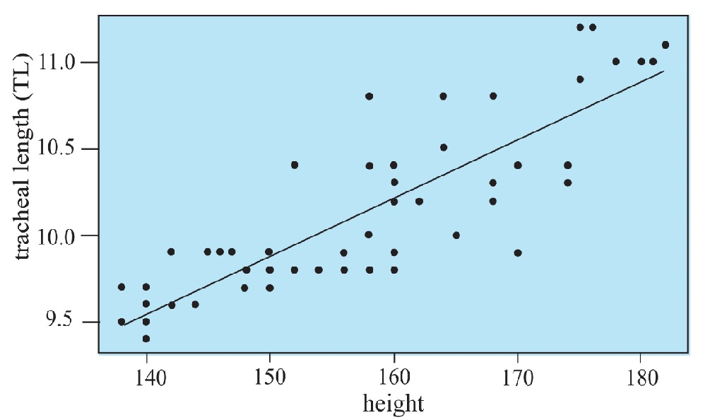 A morphometric study of adult human trachea in West Bengal population