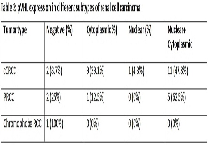 VHL protein expression in renal cell carcinoma