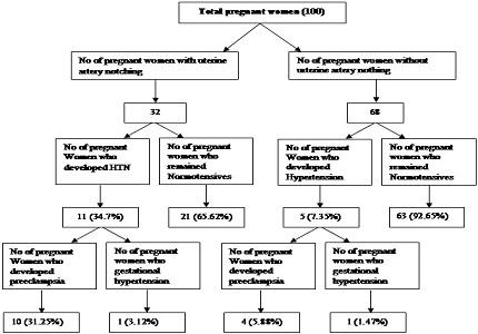 Uterine artery Doppler as a predictor of pre eclampsia - hospital based study